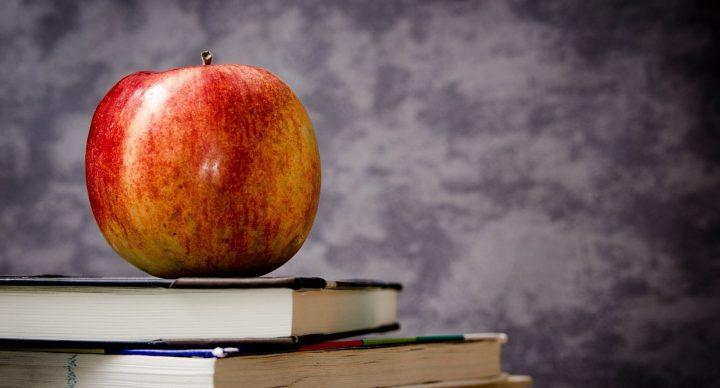 Grade 4 Language Arts/Reading